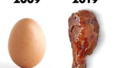 Which Came First – the Chicken or the Egg…or Kylie Jenner? Wingstop UK perfectly capitalizes on two social media trends: The World Record Egg and #10yearchallenge.